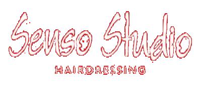 Senso Hair Studio Logo